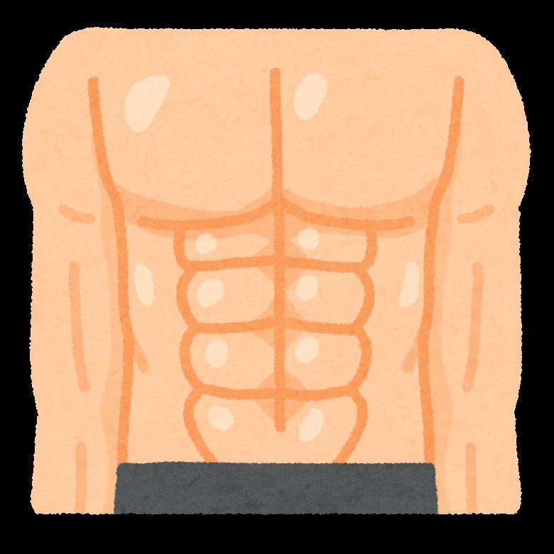 「体幹 フリー素材」の画像検索結果